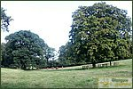 Glasgow City Guide Photographs: Pollok ParkPollok Park 012.JPG05 September 2004 17:34