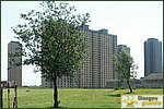 Glasgow City Guide Photographs: BarmullochRed Road Flats 08.JPG31 December 2003 13:19