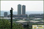 Glasgow City Guide Photographs: BalornockView to Roystonhill.JPG31 December 2003 11:21
